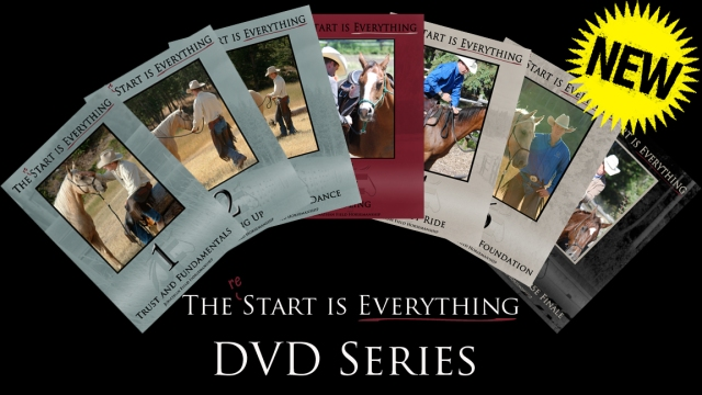 (Re) Start Series cover