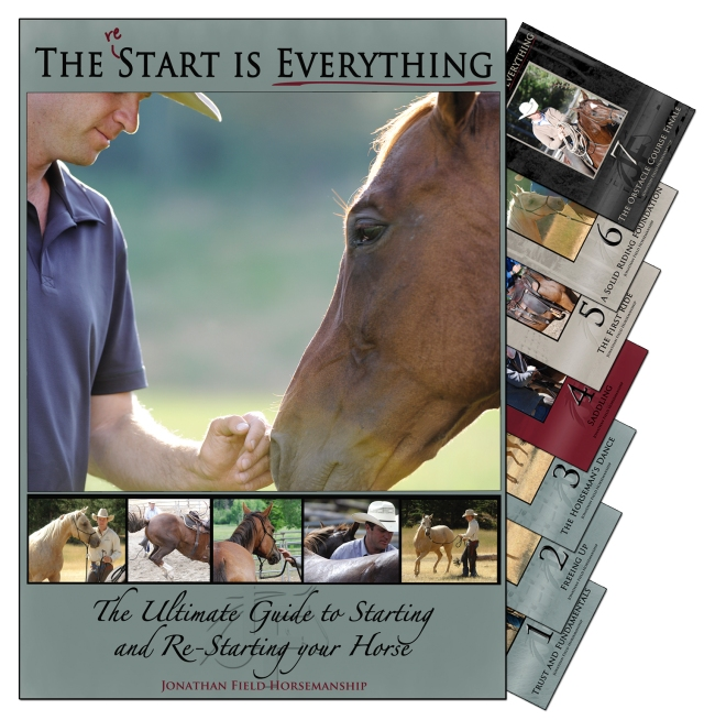 The reStart is Everything DVD Set